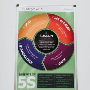 Stages of 5S (b)